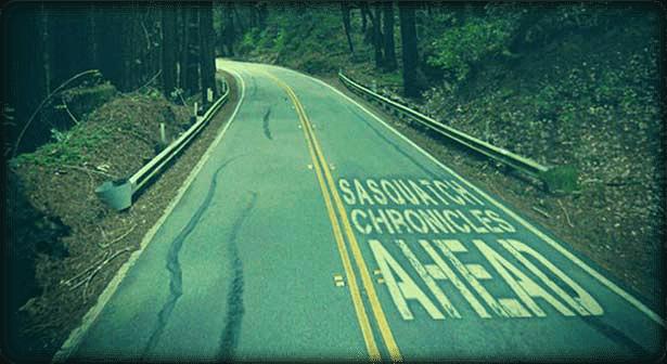 sasquatch-slide-01