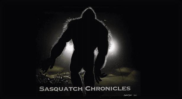 sasquatch-slide-04