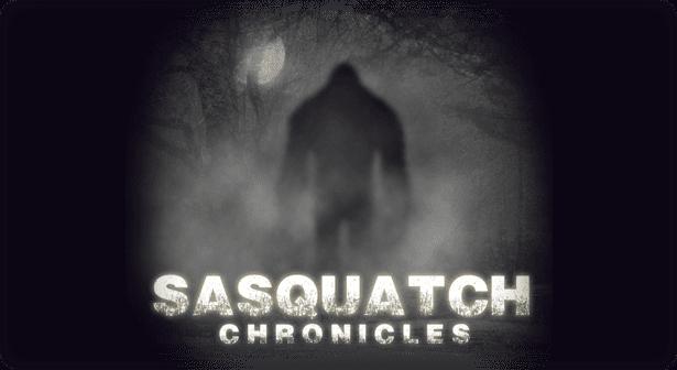 sasquatch-slide-07
