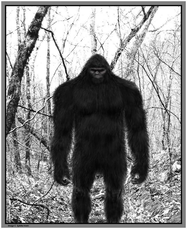 Watch Bigfoot Sighting While Turkey Hunting Sasquatch