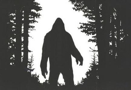 1980 pine mountain kentucky bigfoot smells like rotten