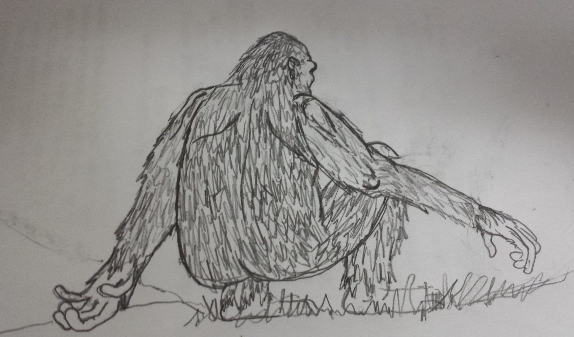 whitebigfoot