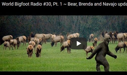 World Bigfoot Radio Bear Brenda And Navajo Update Sasquatch